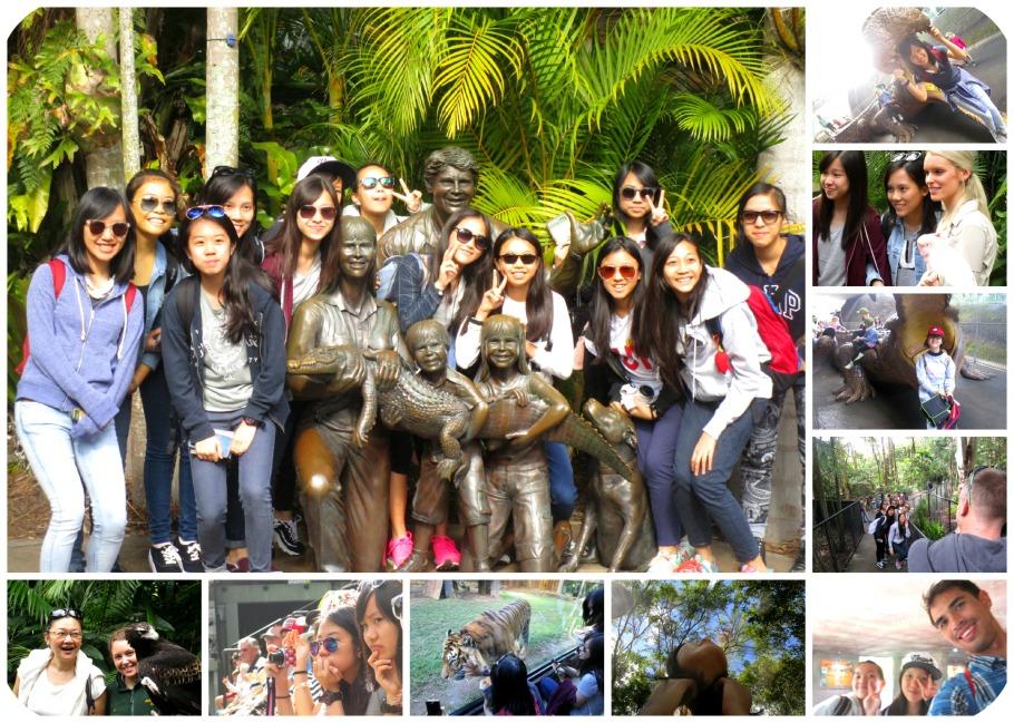 Zoo Group Shots